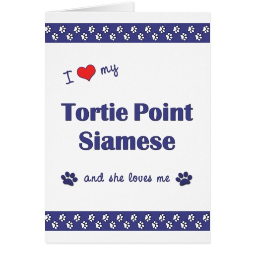 I Love My Tortie Point Siamese (Female Cat) Cards
