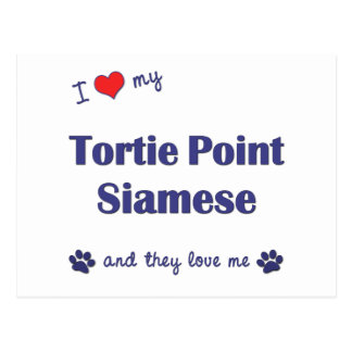 I Love My Tortie Point Siamese (Multiple Cats) Postcard