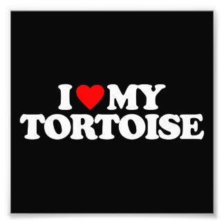 I LOVE MY TORTOISE PHOTO ART
