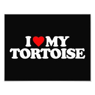 I LOVE MY TORTOISE PHOTOGRAPHIC PRINT