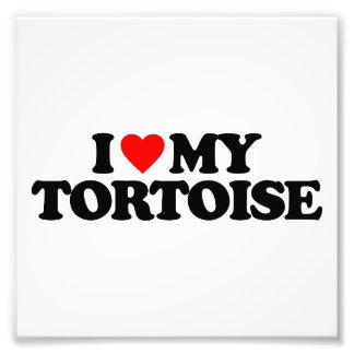 I LOVE MY TORTOISE PHOTO PRINT