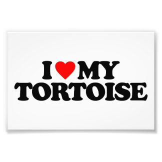 I LOVE MY TORTOISE PHOTOGRAPH