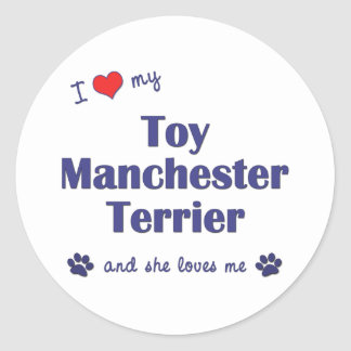 I Love My Toy Manchester Terrier (Female Dog) Classic Round Sticker