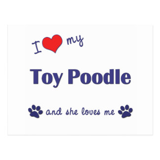 I Love My Toy Poodle (Female Dog) Postcard