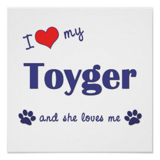 I Love My Toyger (Female Cat) Poster