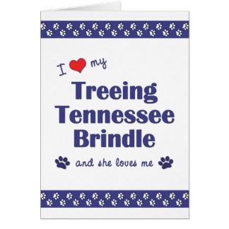 I Love My Treeing Tennessee Brindle (Female Dog) Card