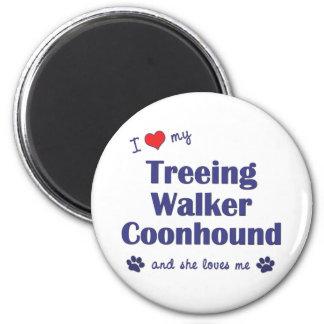 I Love My Treeing Walker Coonhound (Female Dog) 2 Inch Round Magnet