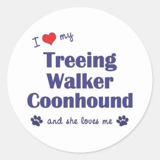 I Love My Treeing Walker Coonhound (Female Dog) Classic Round Sticker
