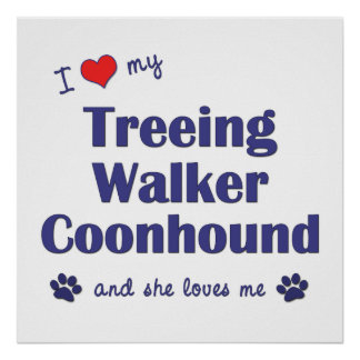I Love My Treeing Walker Coonhound (Female Dog) Poster