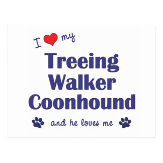I Love My Treeing Walker Coonhound (Male Dog) Postcard
