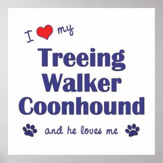 I Love My Treeing Walker Coonhound (Male Dog) Print