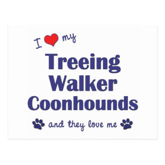 I Love My Treeing Walker Coonhound (Multiple Dogs) Postcard