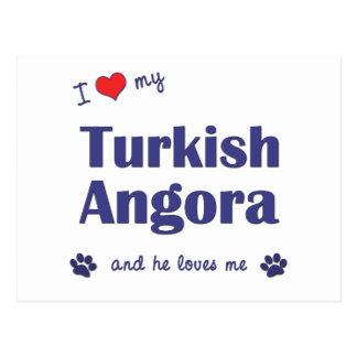 I Love My Turkish Angora (Male Cat) Postcard