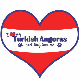 I Love My Turkish Angoras (Multiple Cats) Photo Cut Out