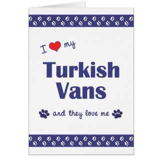 I Love My Turkish Vans (Multiple Cats) Greeting Card