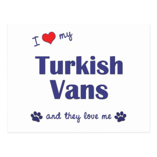 I Love My Turkish Vans (Multiple Cats) Post Cards