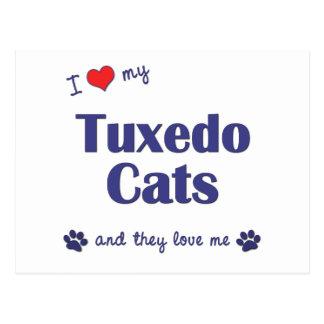 I Love My Tuxedo Cats (Multiple Cats) Postcard