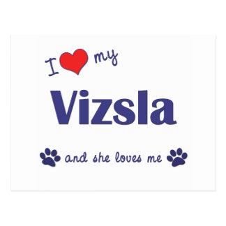 I Love My Vizsla Female Dog Post Card