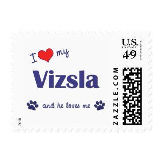 I Love My Vizsla (Male Dog) Postage Stamps