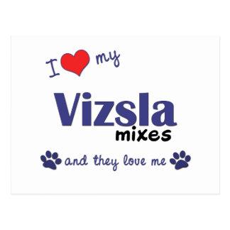I Love My Vizsla Mixes (Multiple Dogs) Postcard