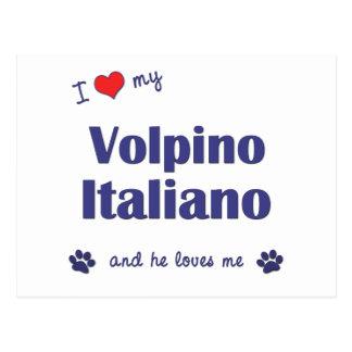 I Love My Volpino Italiano (Male Dog) Postcard