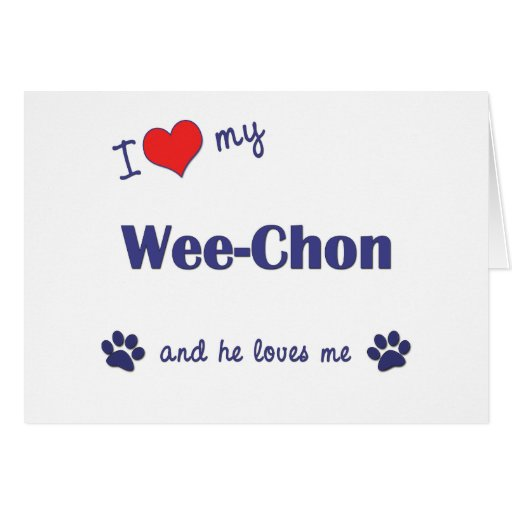 I Love My Wee-Chon (Male Dog) Cards
