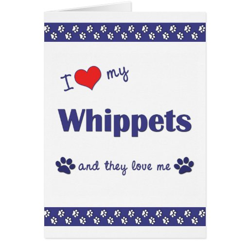 I Love My Whippets (Multiple Dogs) Card