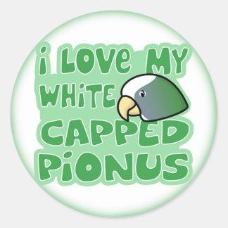 I Love My White Capped Pionus Stickers