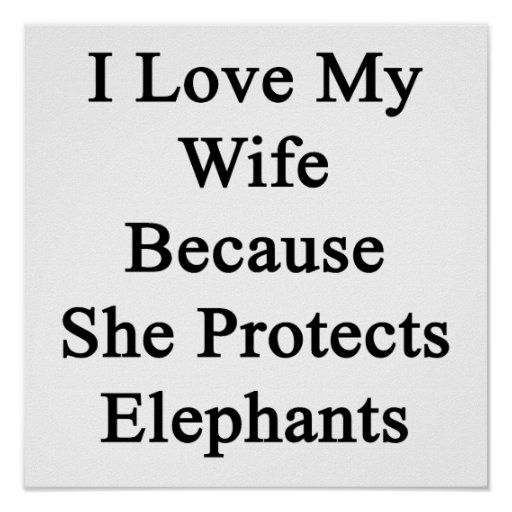I Love My Wife Because She Protects Elephants Poster