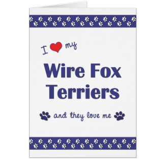 I Love My Wire Fox Terriers (Multiple Dogs) Card