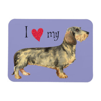I Love my Wirehaired Dachshund Magnet