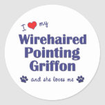 I Love My Wirehaired Pointing Griffon (Female Dog) Stickers