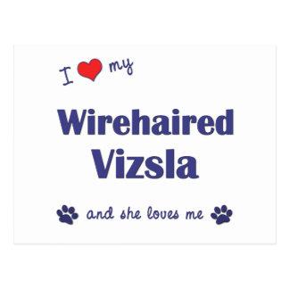 I Love My Wirehaired Vizsla Female Dog Postcard