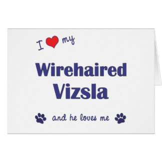 I Love My Wirehaired Vizsla (Male Dog) Card