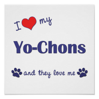 I Love My Yo-Chons (Multiple Dogs) Poster