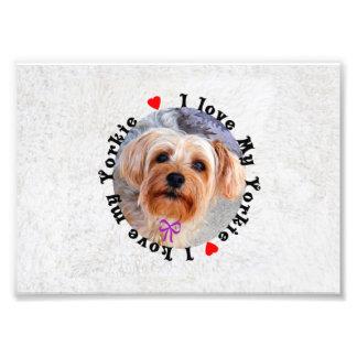 I love my Yorkie Female Yorkshire Terrier Dog Photo Print