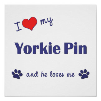 I Love My Yorkie Pin (Male Dog) Poster