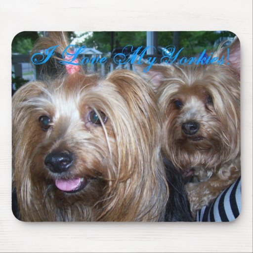 I Love My Yorkies Mouse Pads