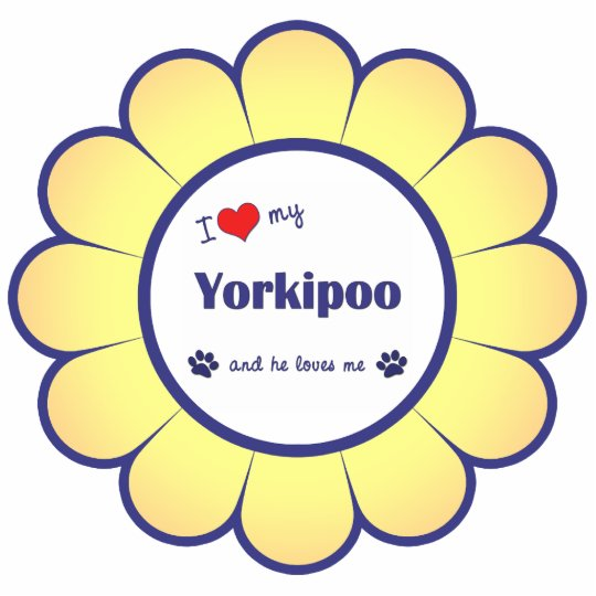 I Love My Yorkipoo (Male Dog) Statuette