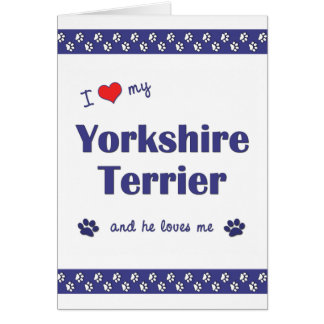 I Love My Yorkshire Terrier (Male Dog) Card