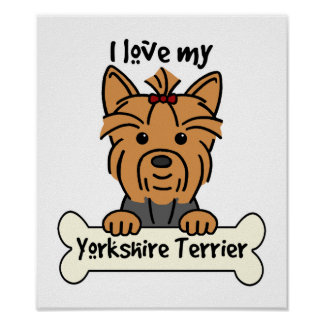 I Love My Yorkshire Terrier Poster