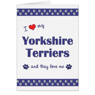 I Love My Yorkshire Terriers (Multiple Dogs) Card