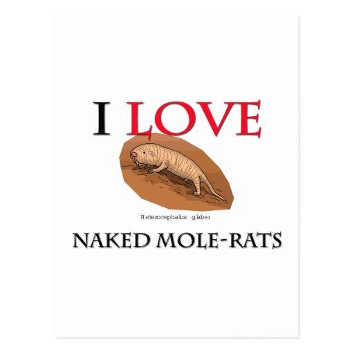 I Love Naked Mole-Rats Postcard