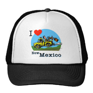 I Love New Mexico Country Taxi Trucker Hat