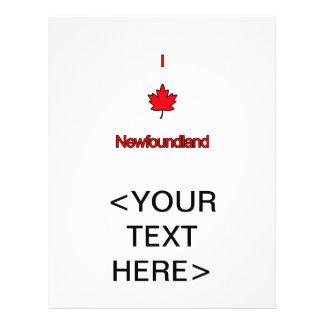 I Love Newfoundland Flyer