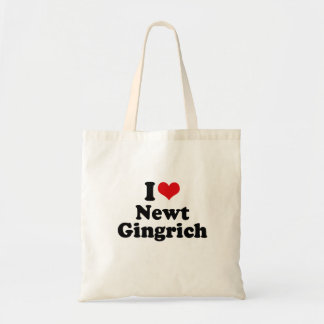 I LOVE NEWT GINGRICH CANVAS BAGS