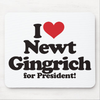 I Love Newt Gingrich for President Mouse Pad
