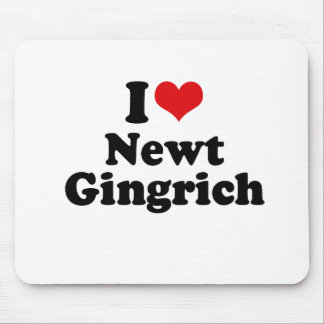 I LOVE NEWT GINGRICH MOUSE PADS