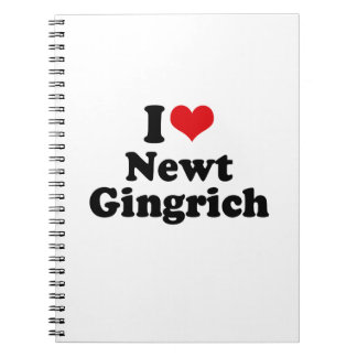 I LOVE NEWT GINGRICH NOTEBOOKS