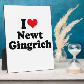 I LOVE NEWT GINGRICH DISPLAY PLAQUES